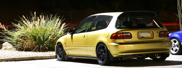 The Gold EG P2